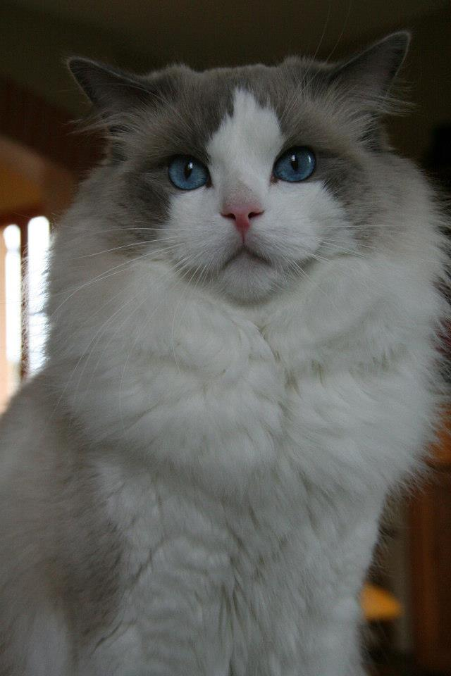 Nathou, 2 ans